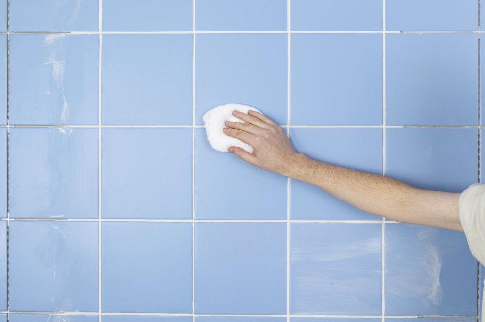 Como limpiar el moho de las paredes empresa de limpieza - Moho en paredes ...